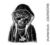 Cat Rapper Dressed In The...