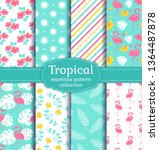 tropical seamless backgrounds... | Shutterstock .eps vector #1364487878