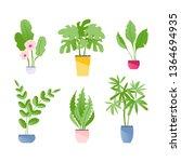 collection of indoor plants...   Shutterstock .eps vector #1364694935
