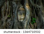monks are entwined with nature | Shutterstock . vector #1364710532