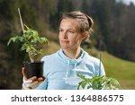 woman gardener watching her... | Shutterstock . vector #1364886575
