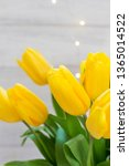 bouquet of yellow tulips and... | Shutterstock . vector #1365014522