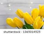 bouquet of yellow tulips and... | Shutterstock . vector #1365014525