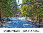 roshchino  russia   april 06 ... | Shutterstock . vector #1365154352