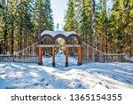 roshchino  russia   april 06 ... | Shutterstock . vector #1365154355