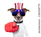 American Dog Pointing With  Bi...