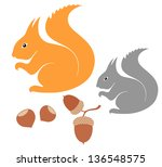 Squirrel. Vector Illustration...