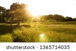 kansas field sunrise | Shutterstock . vector #1365714035