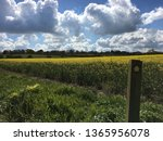 footpath  lincolnshire. uk | Shutterstock . vector #1365956078