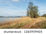 on the bank of the wide dutch... | Shutterstock . vector #1365959405