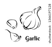 garlic black and white image....   Shutterstock .eps vector #1366197128