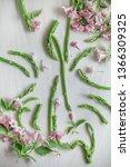 fresh  green asparagus  flatlay ...   Shutterstock . vector #1366309325