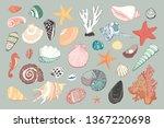 seashells vector hand drawn...   Shutterstock .eps vector #1367220698