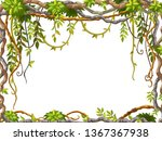 liana branches and tropical...   Shutterstock .eps vector #1367367938