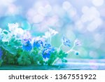 beautiful flowers background ... | Shutterstock . vector #1367551922