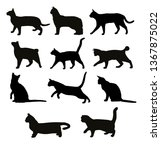 Stock vector silhouette of eleven cats 1367875022