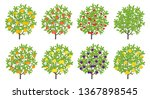 orchard fruit tree set. pear... | Shutterstock .eps vector #1367898545