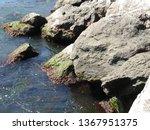 seaside landscape  rocky...   Shutterstock . vector #1367951375