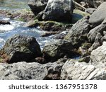 seaside landscape  rocky...   Shutterstock . vector #1367951378