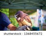 bournemouth  dorset   uk  ...   Shutterstock . vector #1368455672