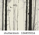 Silhouette Of Deciduous Forest...