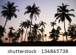 palm trees silhouette at the... | Shutterstock . vector #136865738