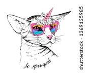 oriental shorthair cat in a...   Shutterstock .eps vector #1369135985