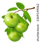 Green Apple Isolated. Three...