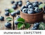 freshly picked blueberries in... | Shutterstock . vector #1369177895