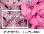 mothers day joyeuse fete des... | Shutterstock . vector #1369635008