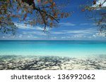 beautiful beach with crystal... | Shutterstock . vector #136992062
