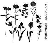 set of silhouettes of flowers... | Shutterstock .eps vector #1370143775
