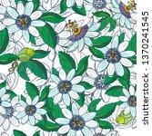 passionflower passiflora... | Shutterstock .eps vector #1370241545