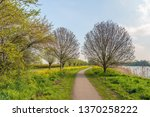 meandering path through a... | Shutterstock . vector #1370258222