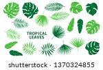 set of tropical green leaves.... | Shutterstock .eps vector #1370324855