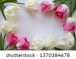 light and pink tulips on white...   Shutterstock . vector #1370384678