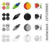 vector design of test and...   Shutterstock .eps vector #1371150065