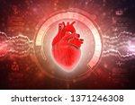 3d illustration  anatomy of...   Shutterstock . vector #1371246308