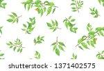 green spring leaves. botanical...   Shutterstock .eps vector #1371402575
