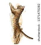 Cat. Wall Sticker. Graphic ...
