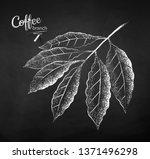 black and white vector chalk...   Shutterstock .eps vector #1371496298