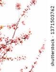 botanical beauty  dream garden... | Shutterstock . vector #1371503762