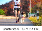 Stock photo woman doing daily exercise jogging on the public park road with puppy breed dog 1371715142