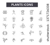 plants line icons  signs set ... | Shutterstock .eps vector #1371726338