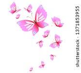 beautiful pink butterflies... | Shutterstock . vector #1371853955