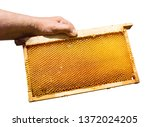 the beekeeper holds a honey  in ...   Shutterstock . vector #1372024205