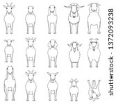 Goats Breeds Line Art