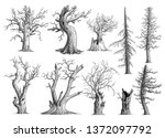 dead tree collection... | Shutterstock .eps vector #1372097792