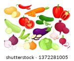 vector icon set of organic... | Shutterstock .eps vector #1372281005