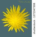 retro color effect flower ... | Shutterstock .eps vector #1372347308